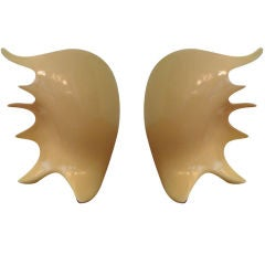 Pair of Antonia Campi Conch Shell Lamps