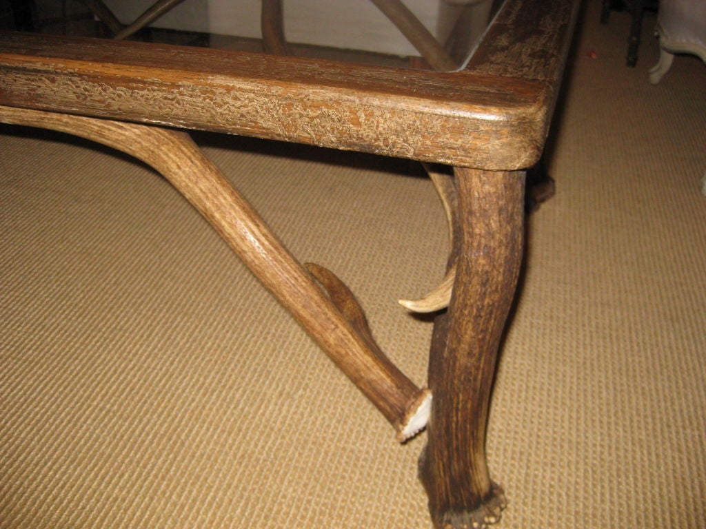 elk horn and fallow deer antler glass top coffee table at 1stdibs