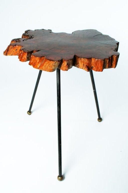 Organic Cypress Tree Slab Tripod Table For Sale At 1stdibs
