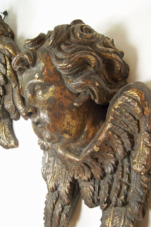 Walnut Large Baroque Carved and Gilt Wood Angels, Italian 18th Century For Sale