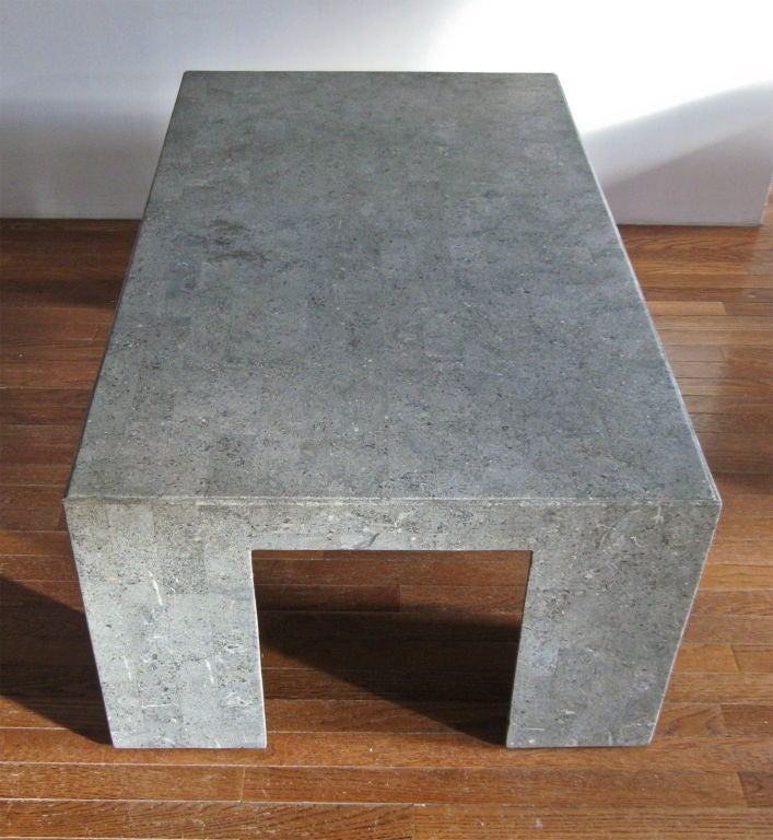 Stone Frame Coffee Table: Tessellated Fossil Stone Coffee Table On Wood Frame Late