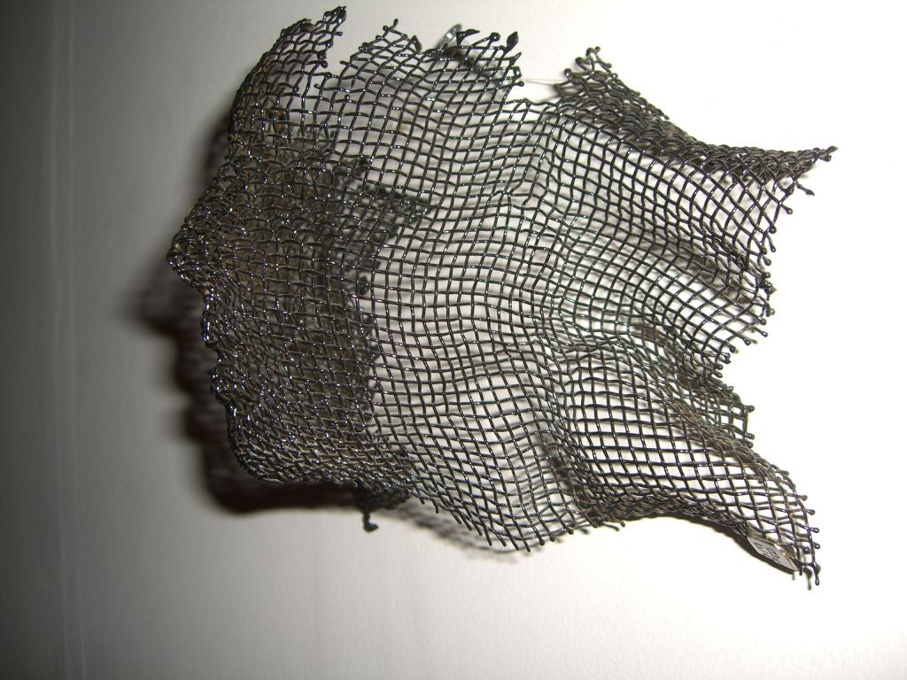 Wire Mesh Wall Sculpture By Noted Idahoan Artist Eric