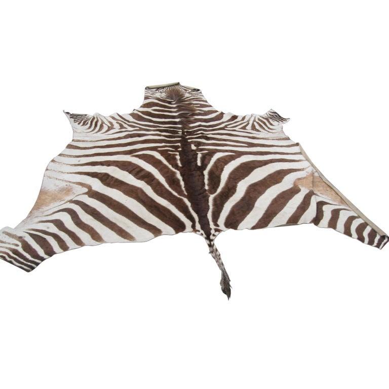 Zebra Sculpture Area Rug: Zebra Skin Rug At 1stdibs