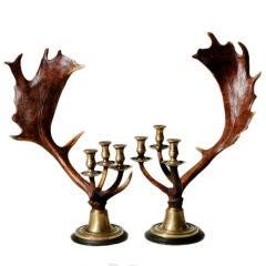 Pair of Antler Candlesticks