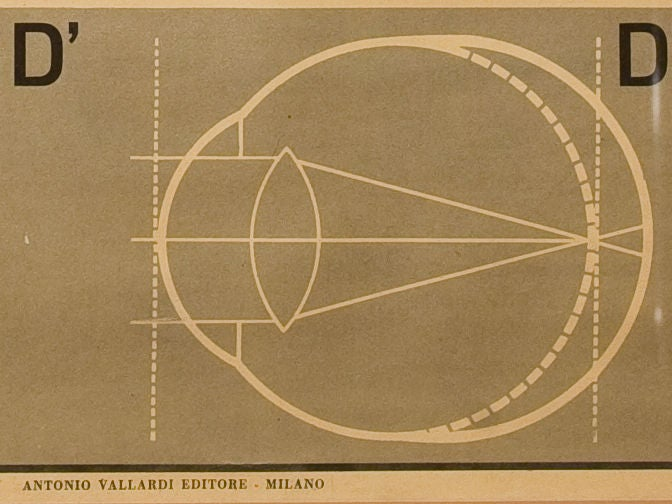 Framed Vintage Italian Teaching Chart of the Eye in French, circa 1940 In Excellent Condition For Sale In Houston, TX