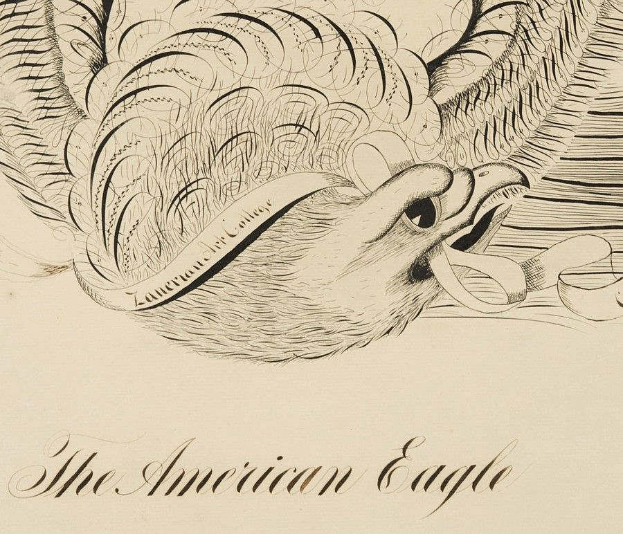 Eagle calligraphy drawing by george beach at stdibs