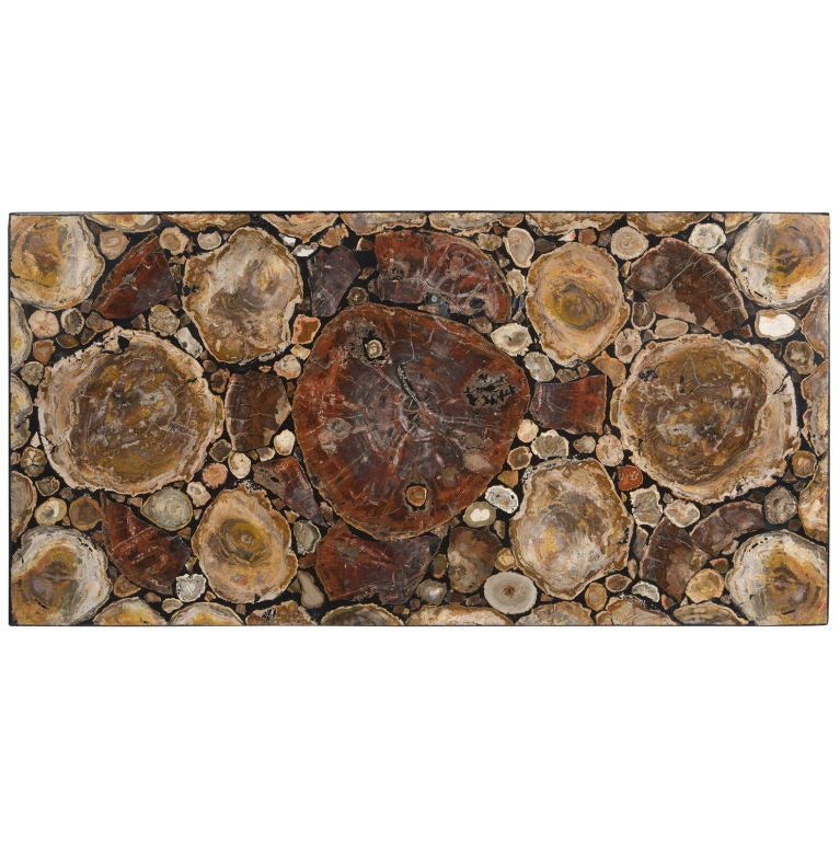 Petrified Wood Coffee Table Top At 1stdibs