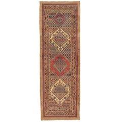 19th Century Bidjar Gallery Runner with Folk Art Border Design