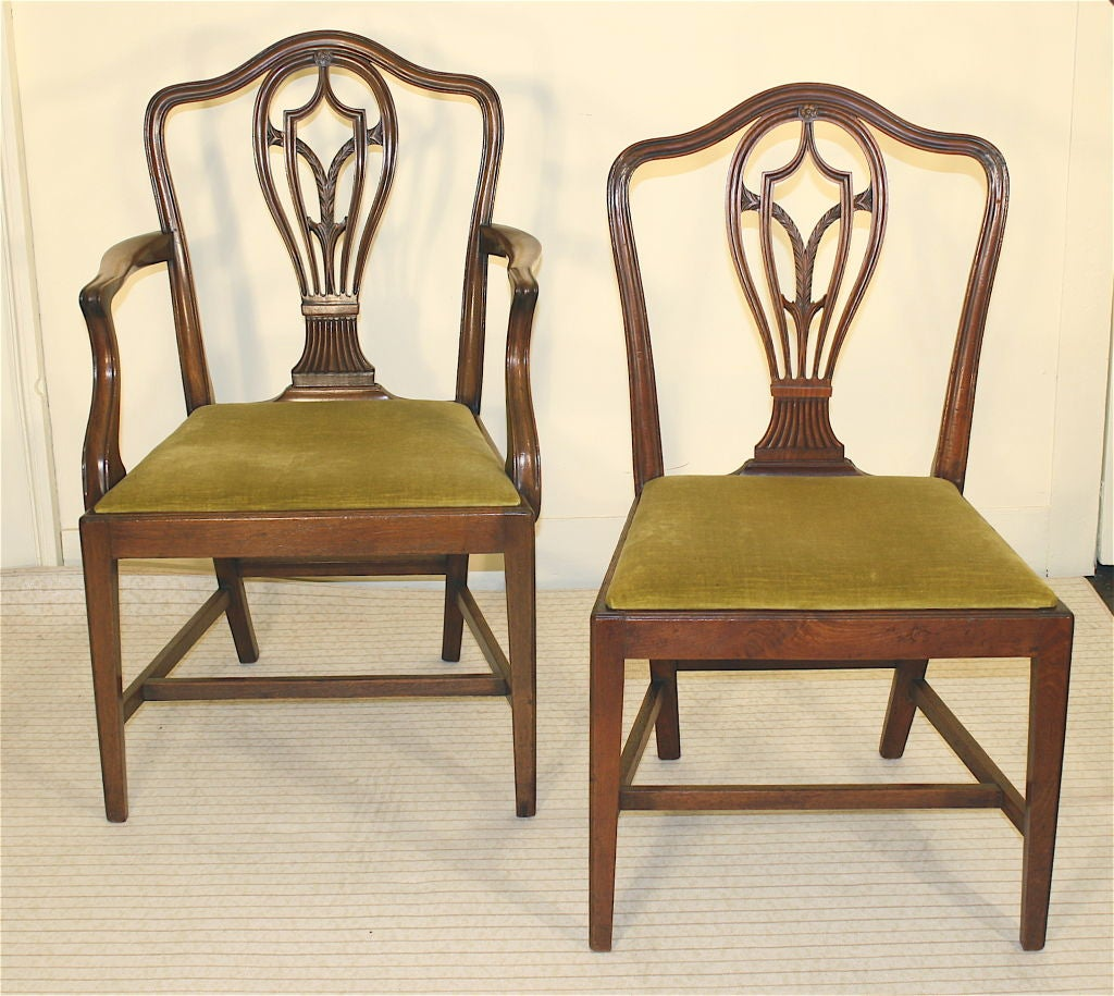 8 Hepplewhite Carved Mahogany Dining Chairs At 1stdibs