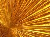 Gilt Wood Carved Sunburst image 6