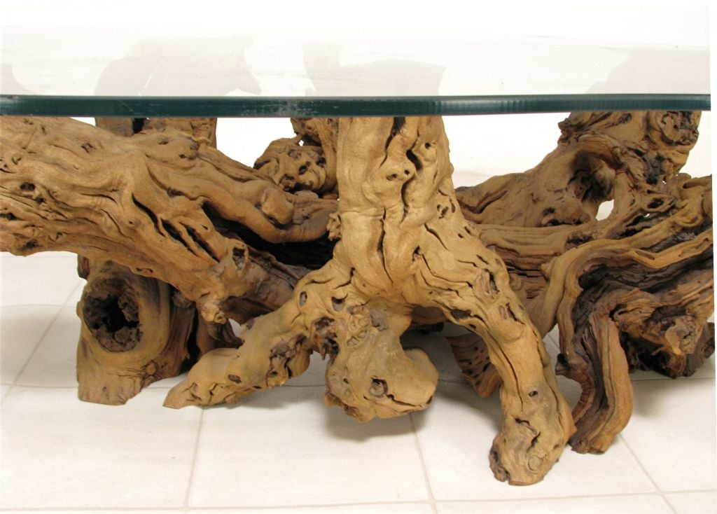 modernist driftwood coffee table with biomorphic plate glass top at 1stdibs. Black Bedroom Furniture Sets. Home Design Ideas