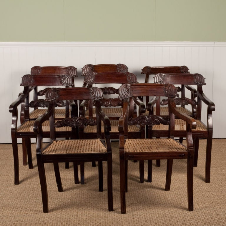 set of eight anglo indian regency style chairs in rosewood at 1stdibs