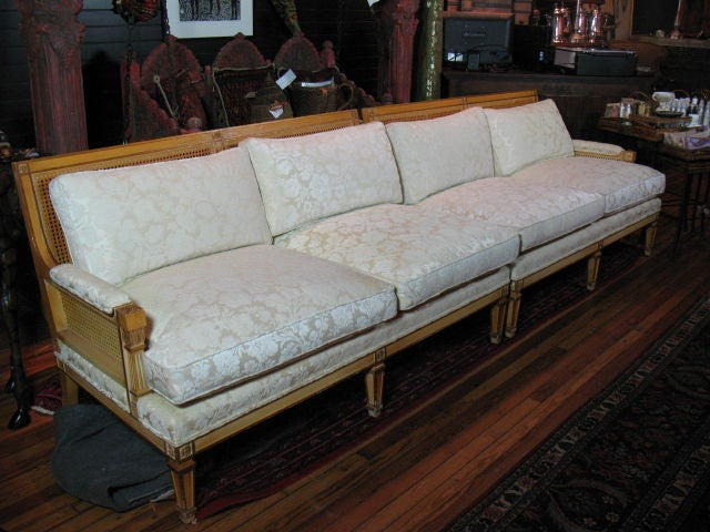 Hollywood Regency Mid-Century Two-Piece Cane Back Sofa 9
