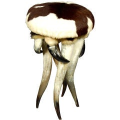 Horn and Cowhide Stool