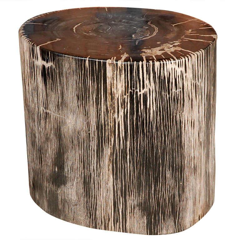 Petrified Wood Stump At 1stdibs
