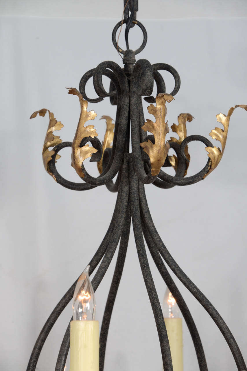 Wrought iron nine light iron chandelier with gold leaf acanthus rococo wrought iron nine light iron chandelier with gold leaf acanthus leaf design for aloadofball Choice Image