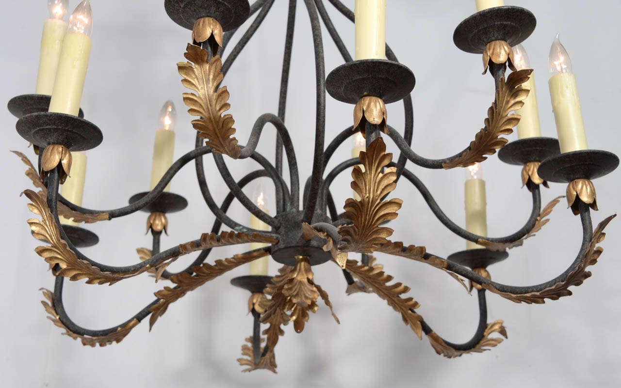 Wrought iron nine light iron chandelier with gold leaf acanthus wrought iron nine light iron chandelier with gold leaf acanthus leaf design for sale aloadofball Choice Image