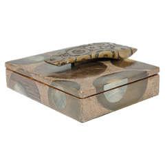 Lidded Shagreen, Wood and Bronze Box by R & Y Augousti