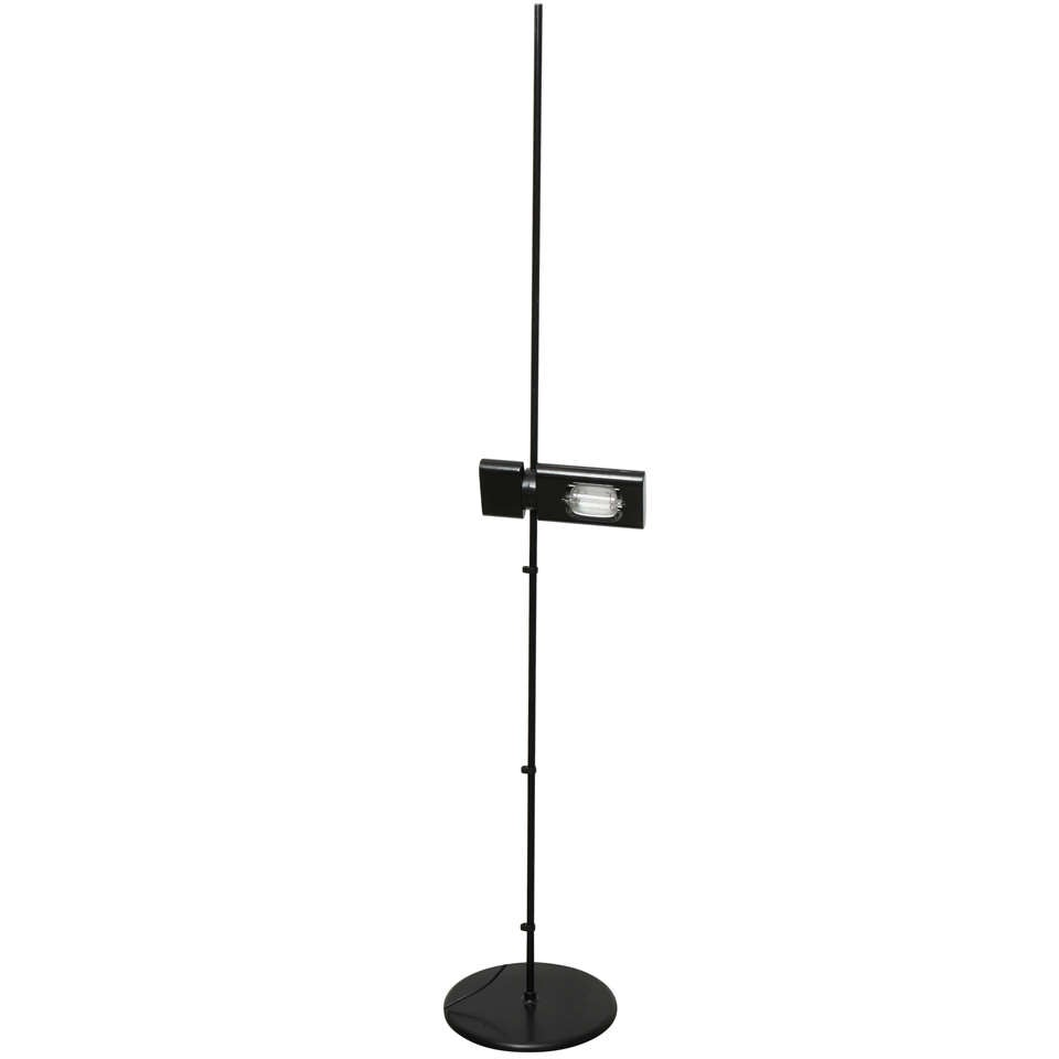 Minimalist Black Floor Lamp by Artemide For Sale