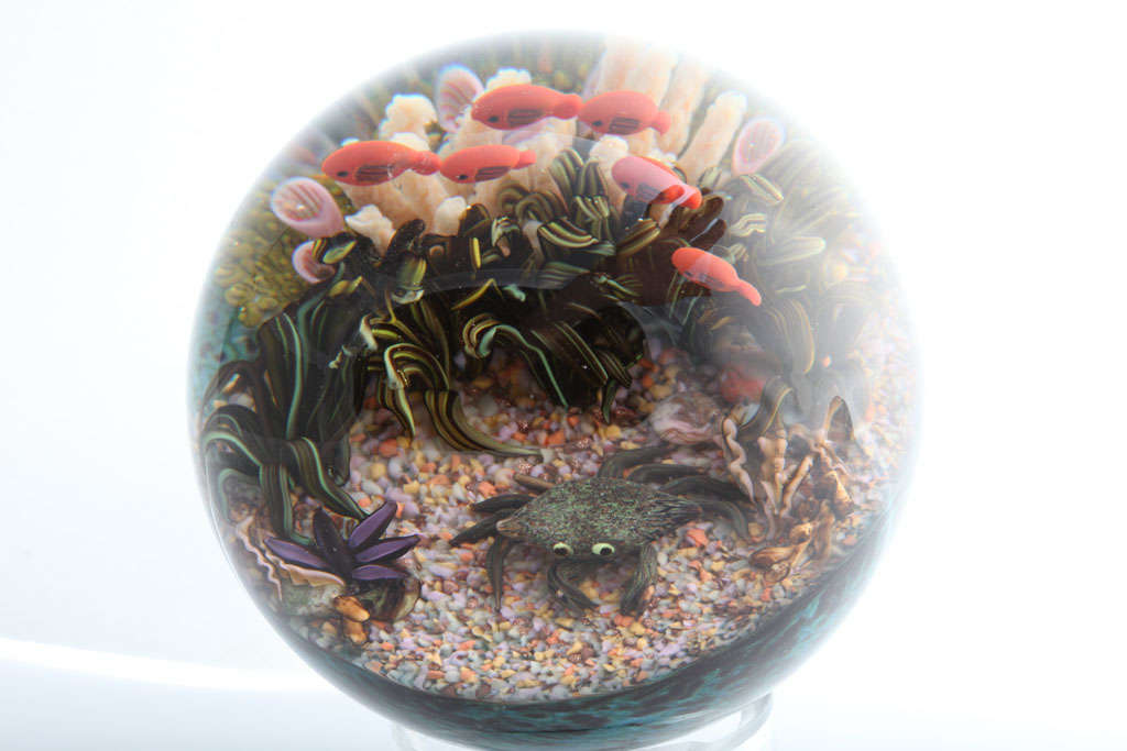 Cathy Richardson Magnum Sea Life Paperweight At 1stdibs