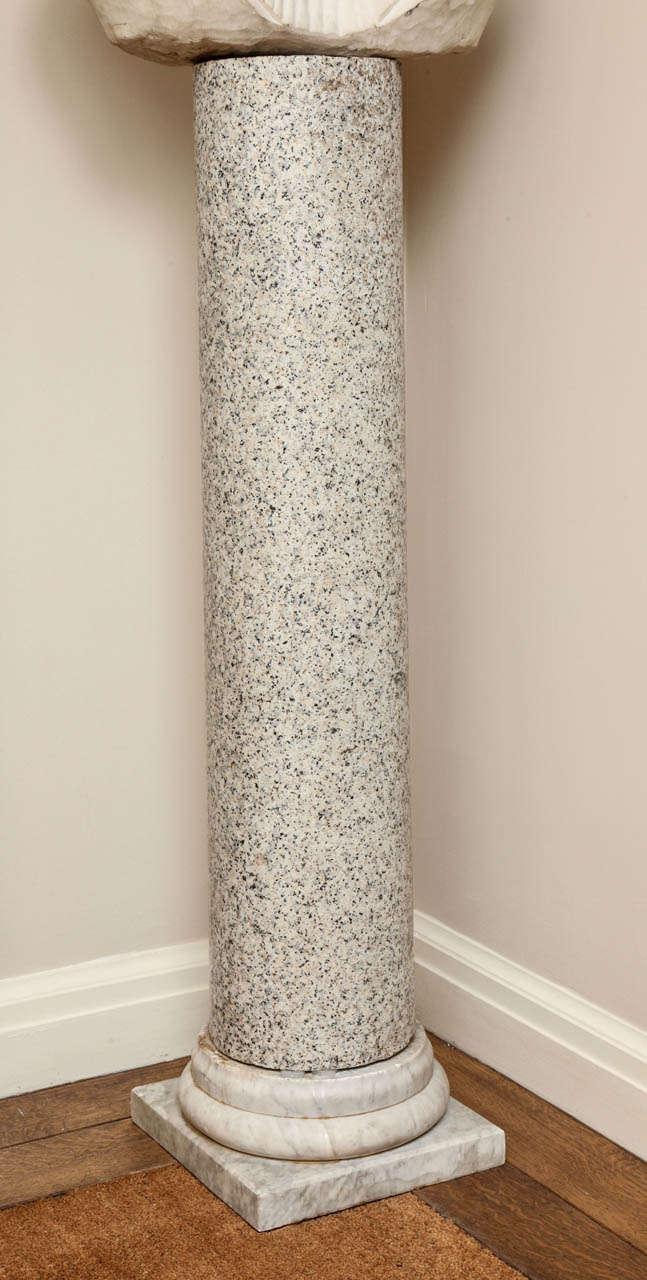 Italian  Granite Column on Marble Base For Sale