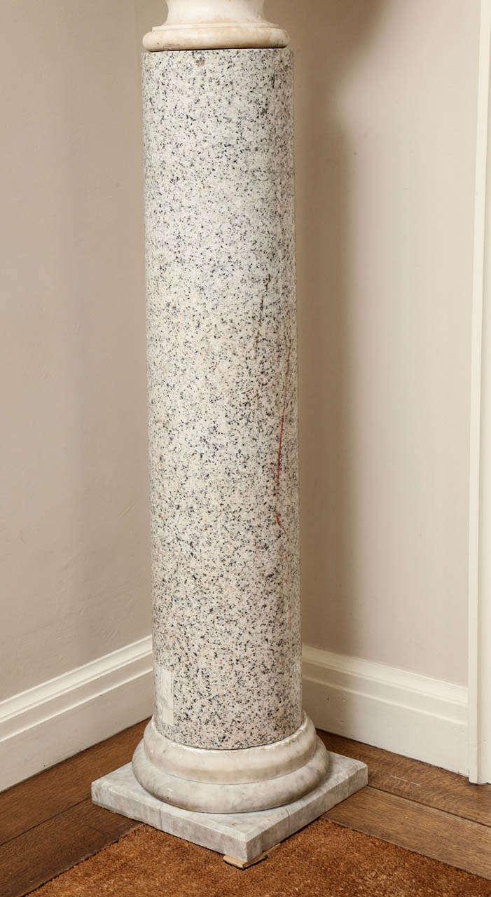 Granite Column on Marble Base For Sale 2