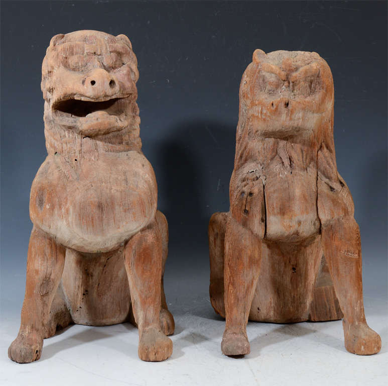 A pair of Japanese carved wooden temple figures in the form of lions seated in traditional pose. The pieces have had some conservation and restoration to stabilize them.  4653