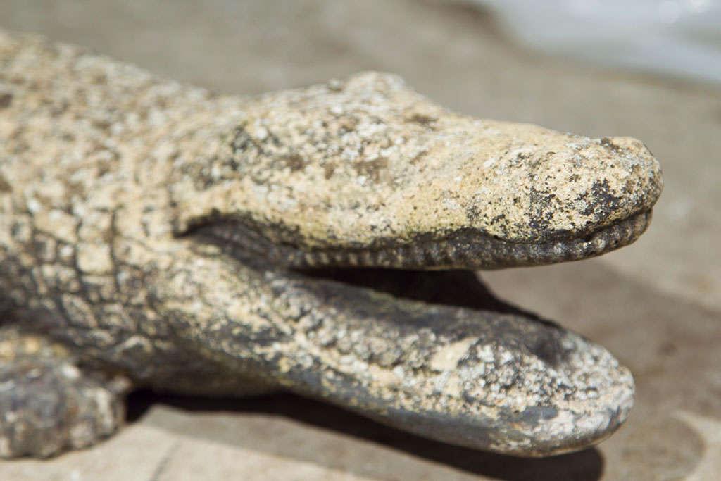 Mid-20th Century Cast Stone Crocodile Garden Statue For Sale