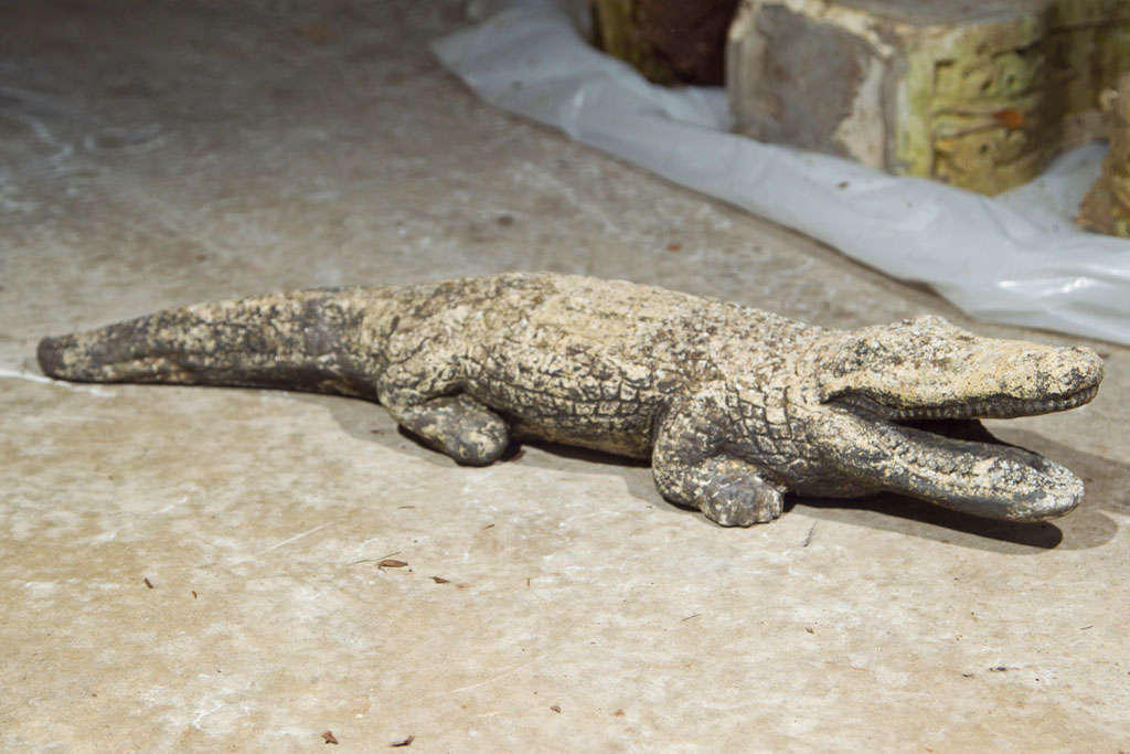 This guy is a terrificly authentic, but not too fierce, cast stone crocodile with traces of black paint that only add to its lichened, weathered patina.  Place him by a naturalized pond or peeking out from underneath your grasses to lend a whimsical