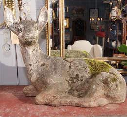 garden deer image 2
