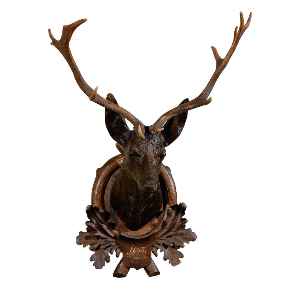 Black Forest Carved Dog Head