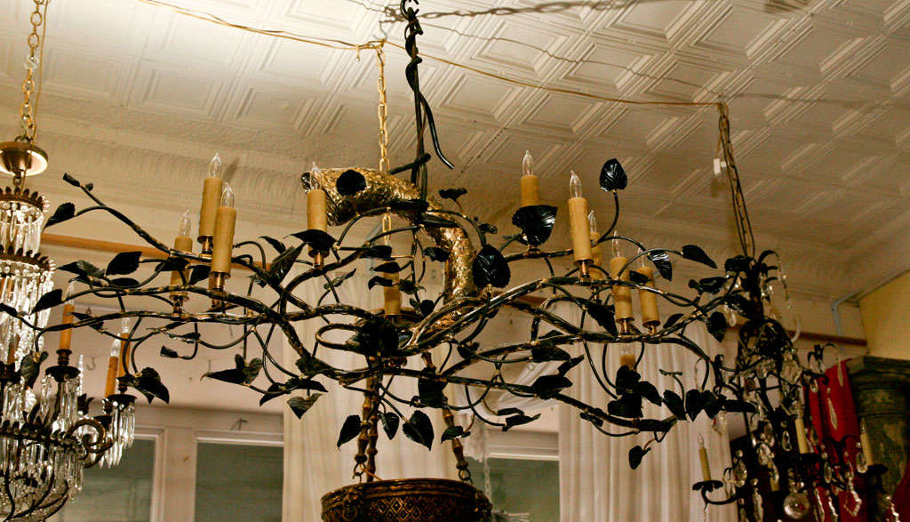 A Original One Of Kind Cottonwood Tree Branch Chandelier In Steel