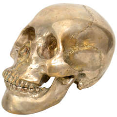 Decorative Nickel Plated Skull Head