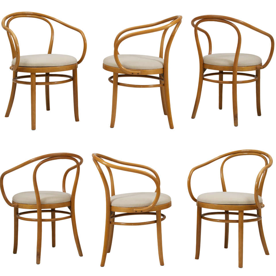 Set Of 6 Thonet Dining Chairs At 1stdibs