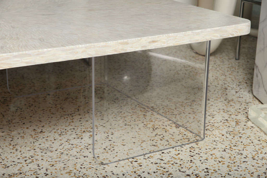Pieced Antler And Lucite Coffee Table At 1stdibs