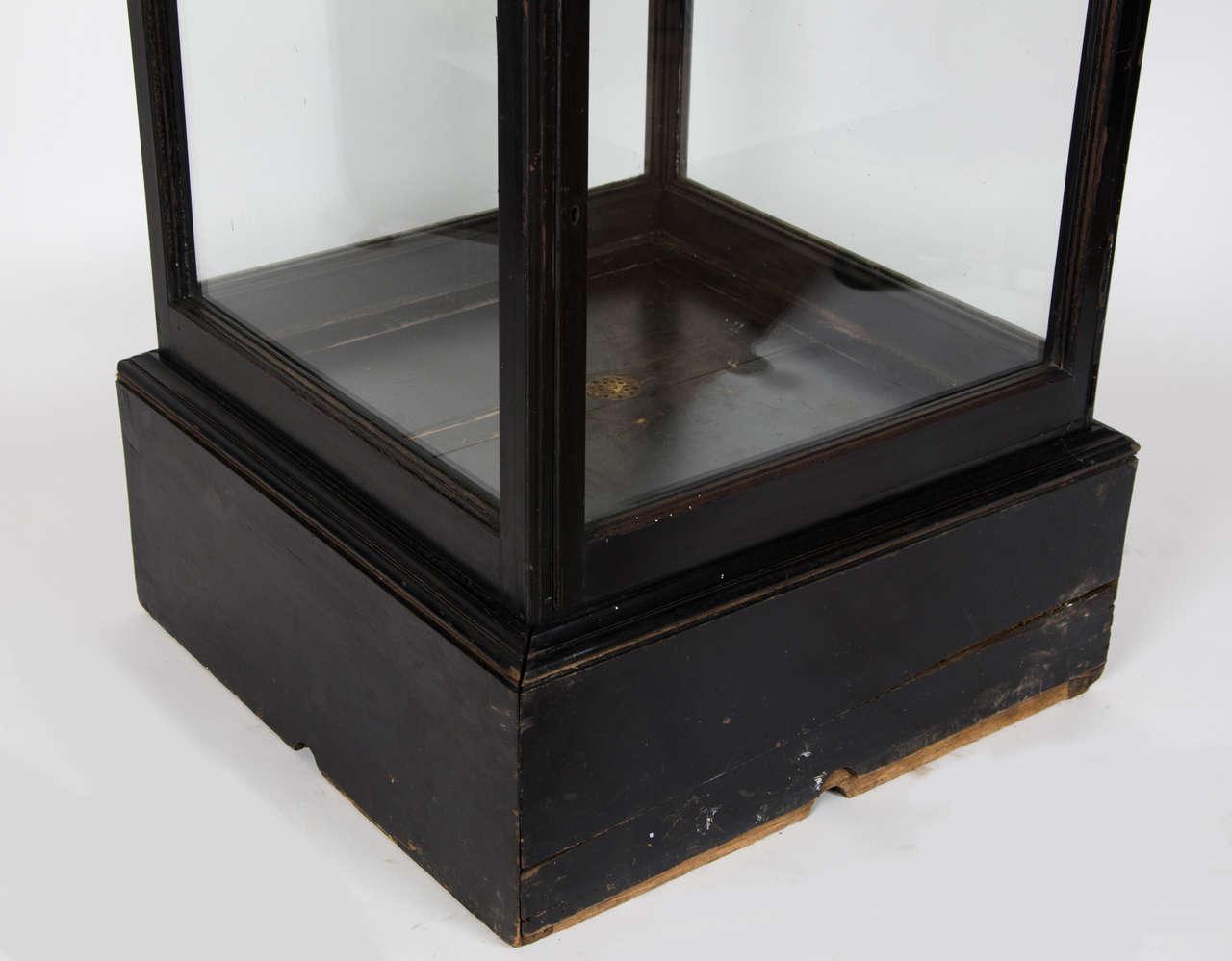 antique mahogany vitrine display cabinet at 1stdibs. Black Bedroom Furniture Sets. Home Design Ideas