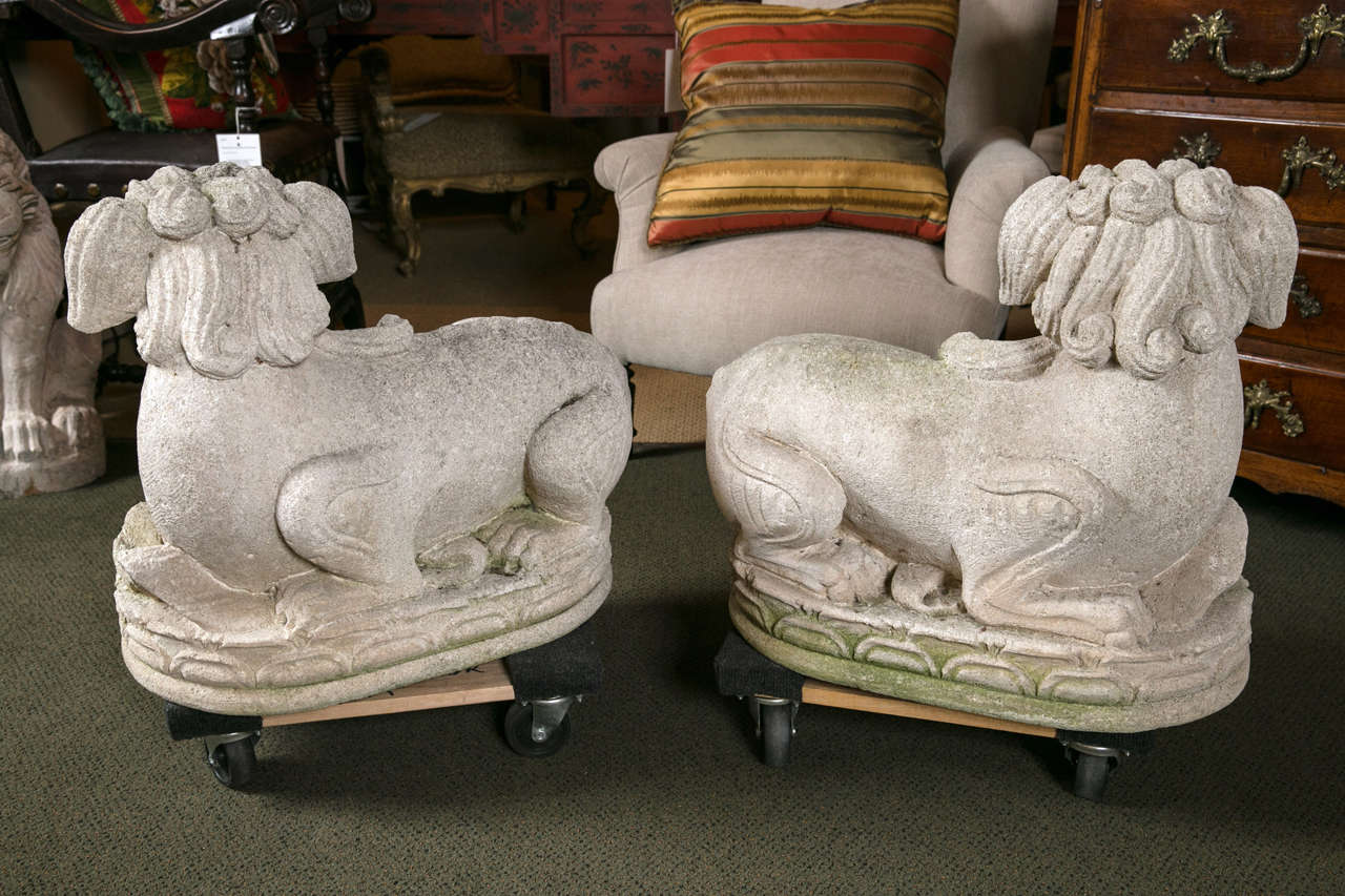 Carved Stone Foo Dogs For Sale 3