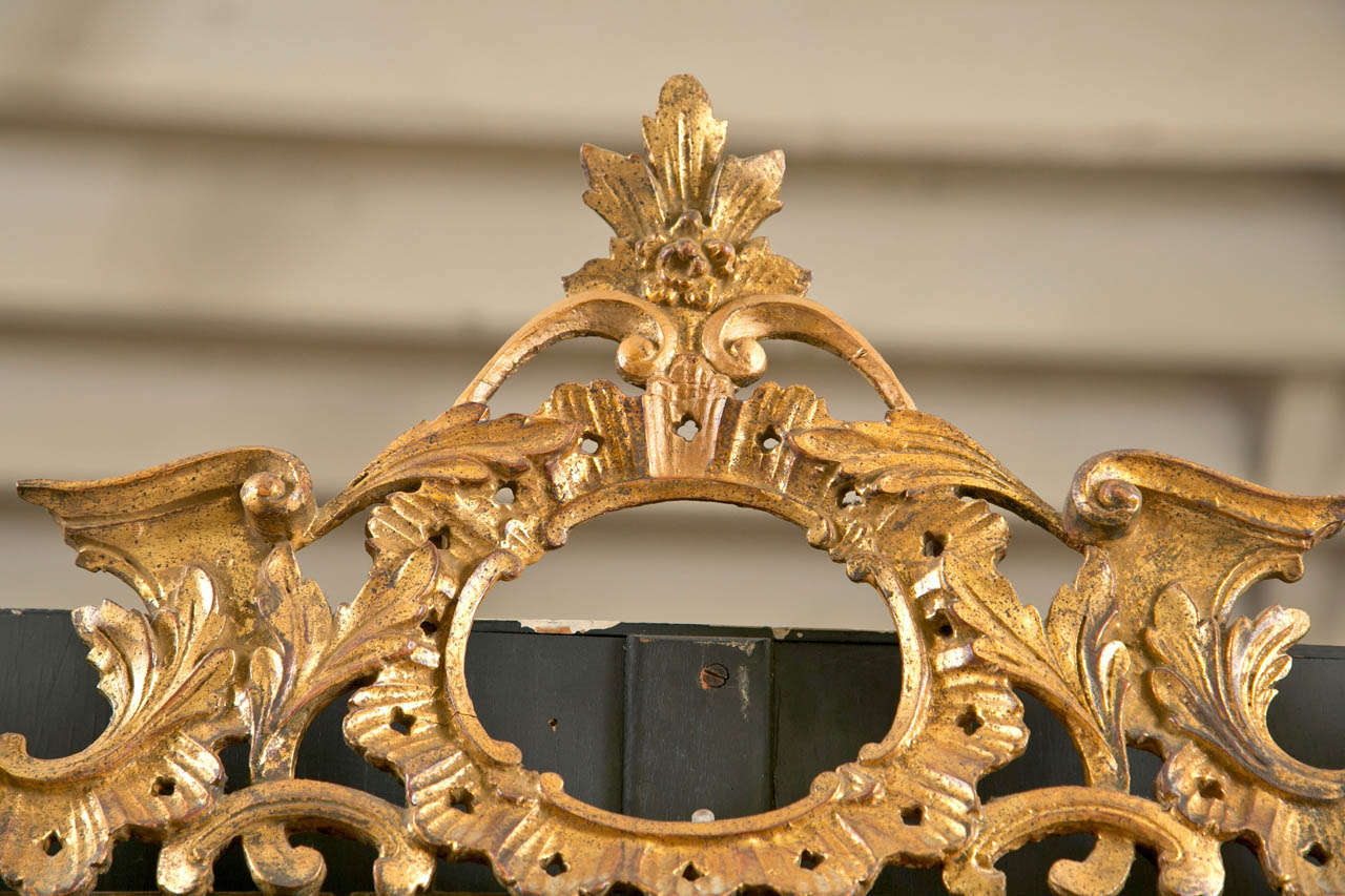 A fine Italian Gilt Carved Wall Mirror. The central panel mirror framed in a gilt gold wooden setting with leafs and flowing vines with rosettes. Finely carved.