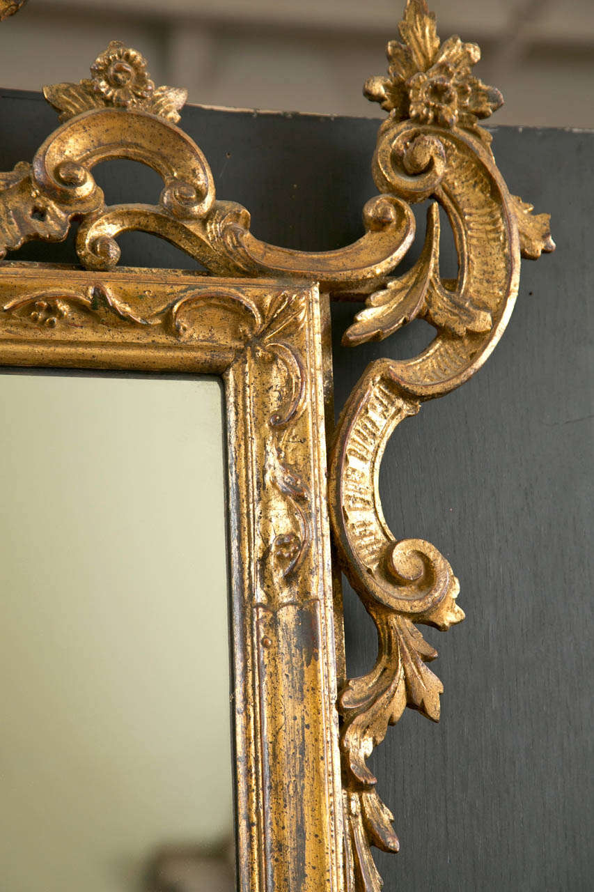 Rococo Italian Gilt Carved Wall Mirror For Sale