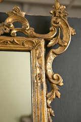 Italian Gilt Carved Wall Mirror image 3