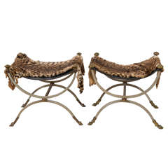 Pair of Neoclassical Wrought Iron Curule Stools