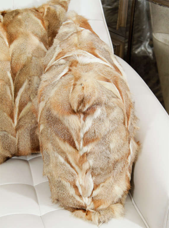 Pillows, Fox Fur, Offered by Area ID For Sale 1