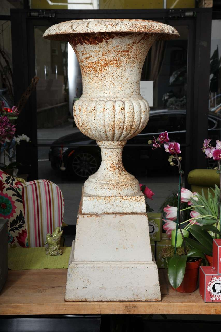 Rare, elegant and stylish Neoclassical urn is of exceptional quality. Urns of this style and quality are equally well suited an interior space as well as an outdoor garden or parkland.