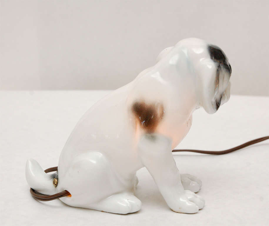 Spotted Dog Nightlight By Capo Di Monte At 1stdibs