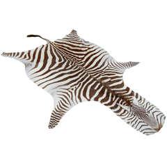 Brown and White Zebra Hide