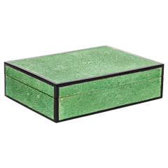 Exotic Shagreen Box with Ebonized Wood Trim