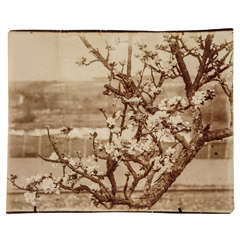Rare Original Eugene Atget Photograph, circa 1900