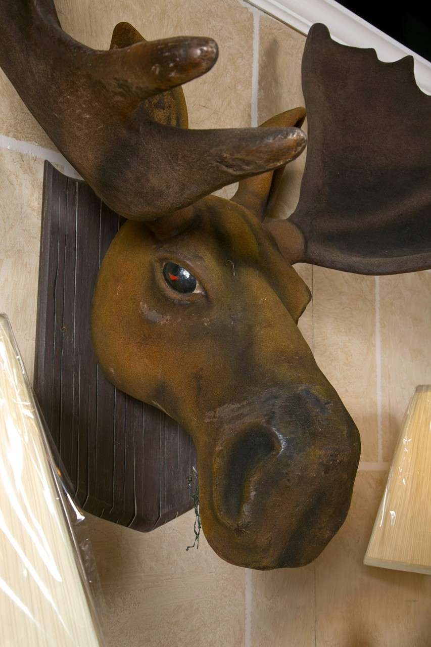 Large Faux Moose Head For Sale At 1stdibs