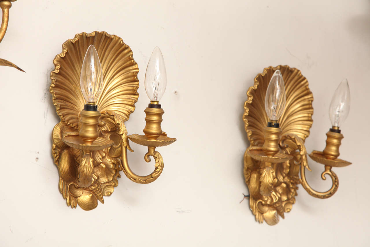 Pair of Two-Light Shell Back Sconces 5