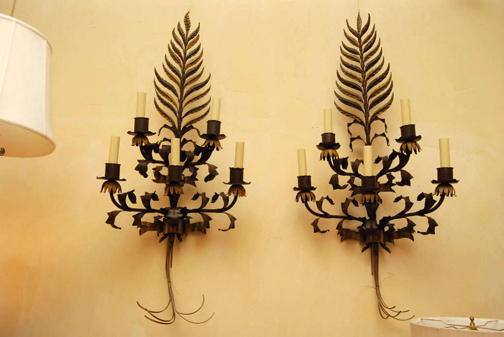 This large scale pair of sconces crafted in Wrought Iron are in a neo baroque style. The metal work is then painted in tole colors of a flat brown almost resembling old bronze with the accent areas done in a soft old yellow color. Each sconce has 5